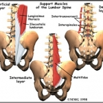 Osteopathy in Singapore